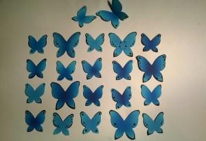 О проблемах наследования окраски крыльев у бабочек рода... Гхм, простите.